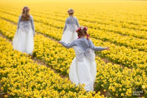 Zuid Holland wedding photographer captured this photo of the flower girls walking through a field full of yellow flowers