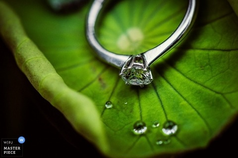 Zhejiang wedding photographer captured this detail image of the brides engagement ring resting a leaf speckled with dew