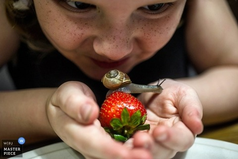 Wedding photograph from Bronx | Image contains: young girl, snail, strawberry