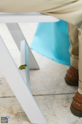 Documentary Wedding Photograph in Outer Banks | Image contains: ceremony, detail, frog, chair, wedding guest, color