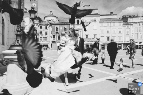 Veneto Wedding Photography | Image contains: city, black, white, baby, groom, bride, pigeons, outdoors