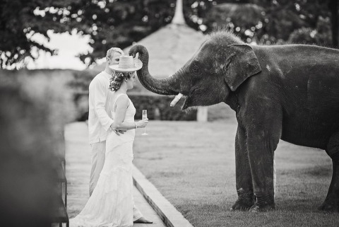 Wedding Photographer Wasan Chirdchom of Phuket, Thailand
