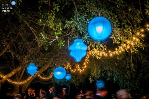 Florida Wedding Photography | Image contains: reception, blue, lanterns, trees, outdoors, color, lights