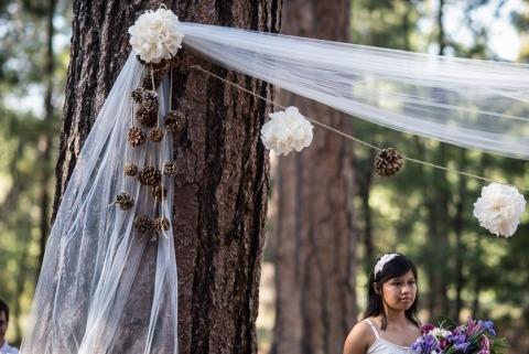 Wedding Photographer David Crane of California, United States