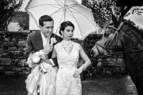 Photographe de mariage Nick Despres de, Royaume-Uni