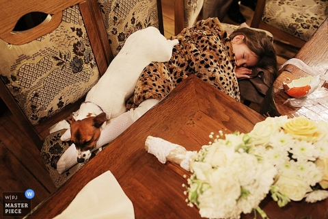 Documentary Wedding Photographer | Image contains: dog, flowergirl, sleeping, table, flowers, chairs, reception
