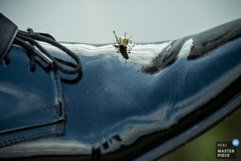 Thuringia Documentary Wedding Photography in Germany | Image contains: groom, shoes, reflection, grasshopper, detail shot, bug