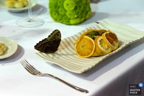 Wedding Photographer in Naples | Image contains: detail, butterfly, oranges, table, food, fork, color
