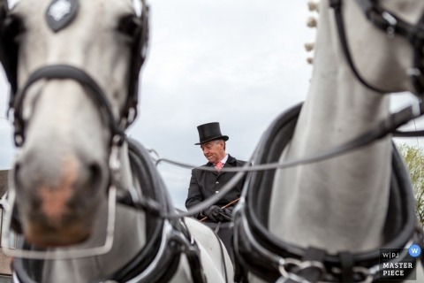 London Wedding Reportage Photographer   Image contains: horses, coachman, reins, sky, color
