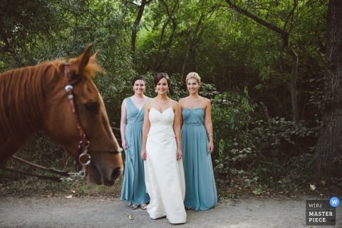 Northern California Artistic Wedding Photography | Image contains: bride, bridesmaid, horse, outdoors, portrait, woods