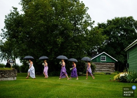 Toronto wedding photographer caught the moment of the bride and bridesmaid walking through the grass under black umbrellas during a rainstorm