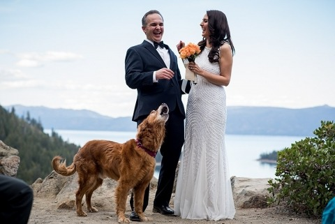 Wedding Photographer Tara Theilen of Nevada, United States