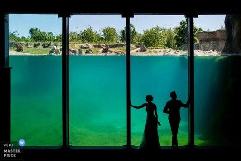 The silhouette of the bride and groom can be seen as they stand by tall windows half submerged in water in this wedding day portrait by a Netherlands documentary photographer.