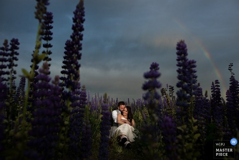 Lake Tahoe wedding photographer captured this photo of the bride and groom cuddling in a field of lavender as a rainbow crosses the sky behind them