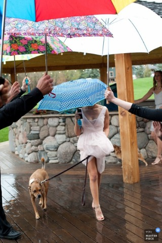 Livingston bride holds umbrella while with her dog in the rain at the wedding - Montana wedding photojournalism
