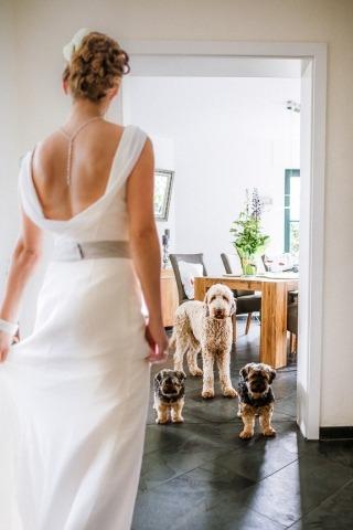 Hochzeitsfotograf Axel Breuer aus, Deutschland
