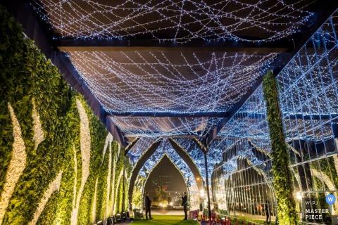 De huwelijksfotograaf van Montpellier veroverde dit beeld van een mooie lege tuin gedrapeerd met strengen blauwe lichten 's nachts