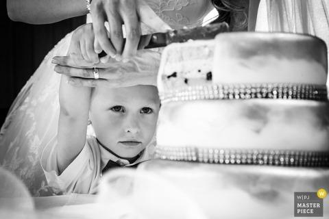 Prague little boy helps the bride cut the wedding cake | Czech Republic wedding photo