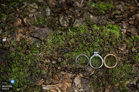 Up close image of Singapore rings | Asia wedding photography