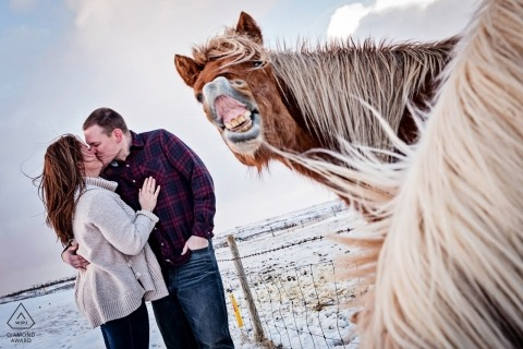 Maryland wedding engagement pictures with horses by Baltimore photographer