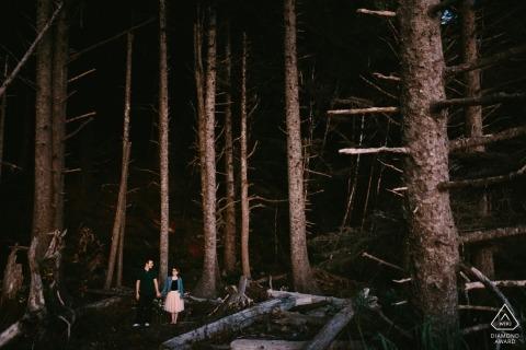 Denver Hochzeit Verlobungsbilder in den Bäumen und im Wald durch Hochzeit in Colorado
