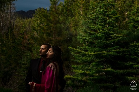 San Diego couple portrait Photographer. In the trees with Beautiful lighting during this engagement shoot.