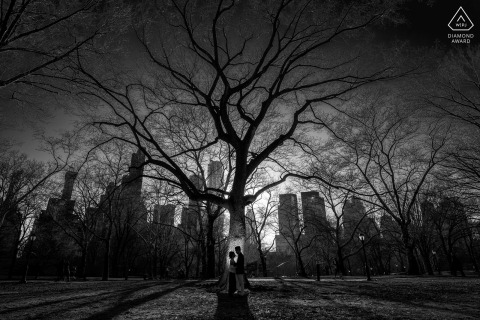Black-and-white engagement portrait of a couple against a tall tree