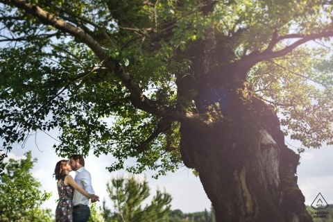 A giant tree dwarfs this Nouvelle-Aquitaine couple during their pre-wedding engagement portrait session