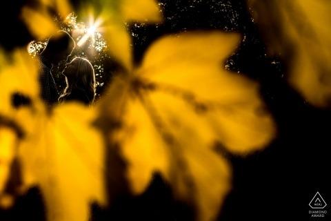 Sesión fotográfica previa a la boda en el parque de Seattle, Washington, con follaje de otoño y el sol