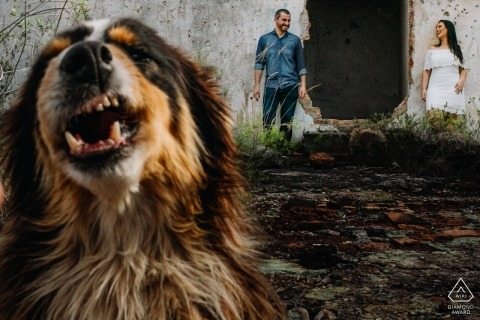 Rio Grande do Sul engagement portrait near abandoned building with a happy dog