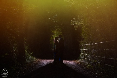 London pre-wedding engagement portraits shot in the park with wonderful lighting