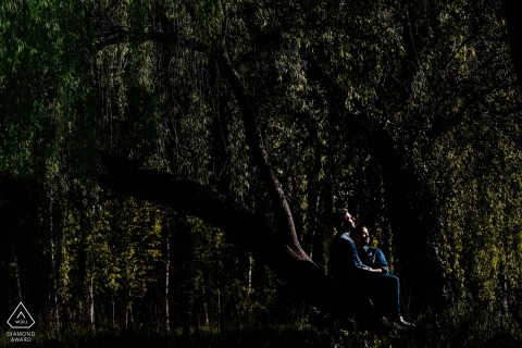Castile and León engagement portrait in the dark forest with great lighting
