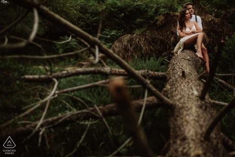 一對夫婦的比斯開灣前婚禮訂婚畫象坐一棵下落的杉樹