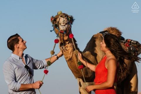 Dubai Camels during engagement shoot | Camel Spit in UAE