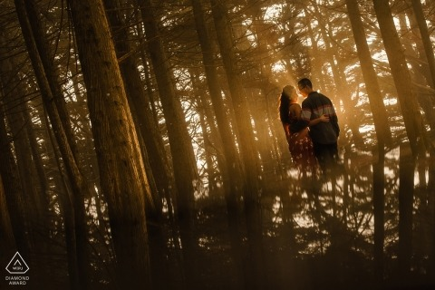 CA engagement images of a couple in a forest setting with sunlight | California photographer pre-wedding session