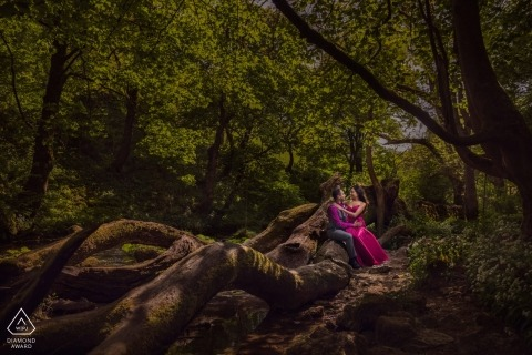 England engagement images of a couple sitting on huge tree logs and roots    London photographer pre-wedding session for portraits