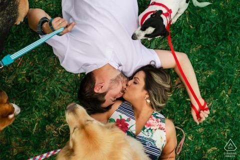 Brazil wedding engagement portrait of a couple on the grass with their dogs | pre-wedding pictures