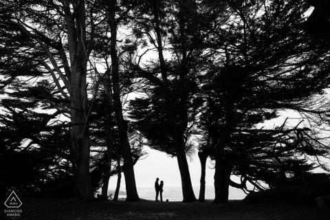 Cypress Grove Mendocino-verlovingsportret van een paar afgetekend in de bomen