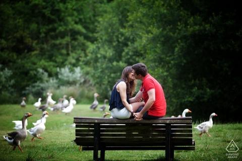 Braga foto's van een verloofde huwelijksaanzoek van een echtpaar zoenen op een bankje in het park met ganzen | Portugal portret schieten
