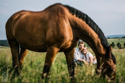 Fotograf ślubny w Niemczech | Hesse Fotografia z końmi