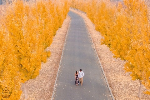 CA wedding engagement portrait of couple with yellow trees in the fall | pre-wedding photography session