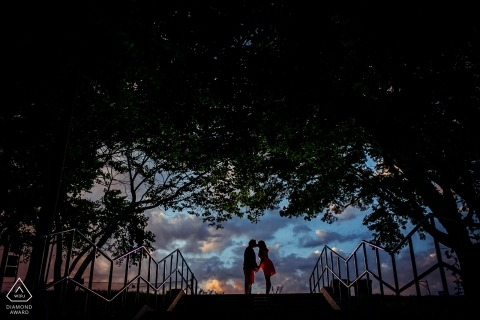 Outdoor engagement portrait session under trees and clouds in Chicago   Illinois Wedding Engagement Photographer