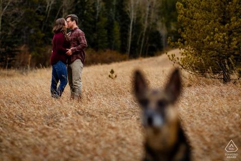 Das verlobte Ehepaar in Denver, CO, teilt einen Kuss in der Nähe von Krileys Teich, während ihr Hund Koda während seiner Verlobungsfotografie mit Spring Golden Gate Canyon Ausschau hält.