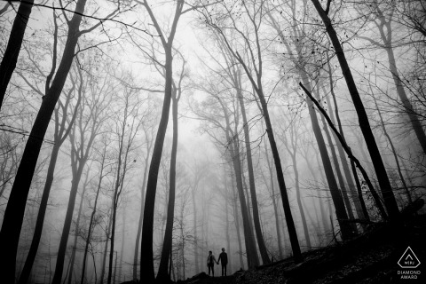 À travers le brouillard | Maryland Engagement Photographier dans les arbres