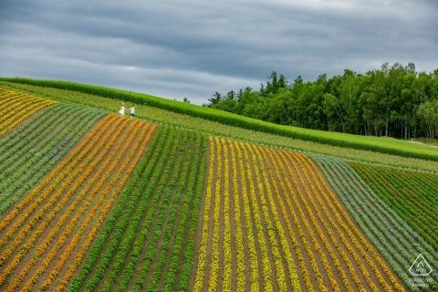 Hokkaido | fleurs dans les champs avec le couple marchant