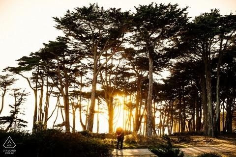 Ritratto di fidanzamento di San Francisco tra gli alberi e il tramonto