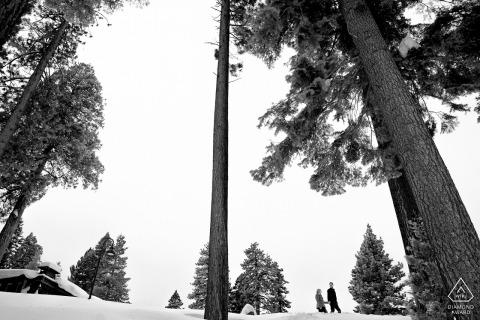 Condos, West Lake Tahoe | Zaręczyny Portraint na niebie i śniegu i drzewach