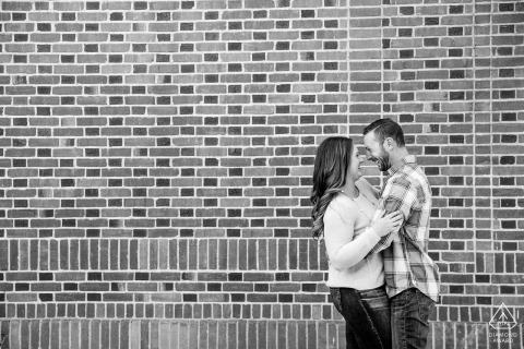 內華達大學校園,Reno在Laughin Bricks參與畫像