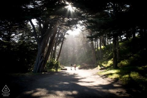 Main de Dieu lumière dans les arbres de Californie - Photographie de fiançailles