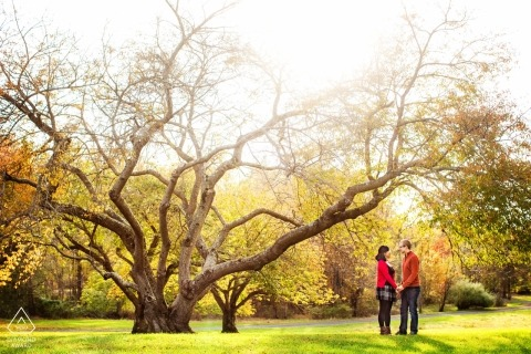 Fall Trees Shoot - New Jersey Engagement Session